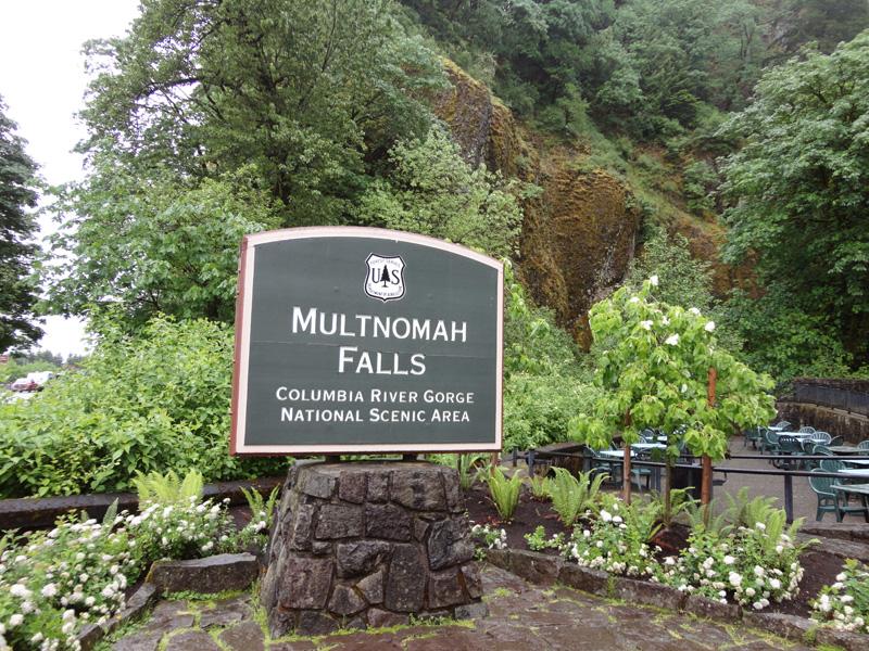 multnomah falls1