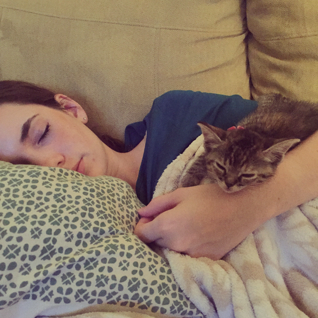 catnapping1