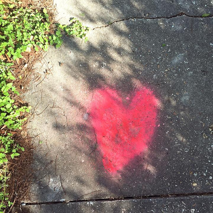 heart crop1